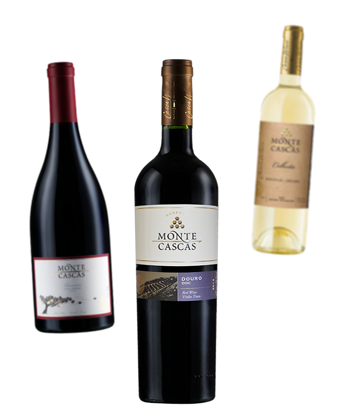 Monte Cascas - Our Wines